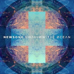 NewSong [Swallow The Ocean]